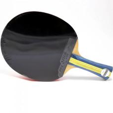 Ракетка для настольного тенниса DHS S-S302
